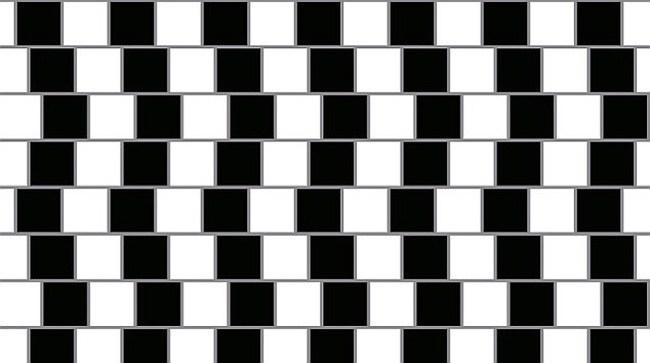 14 optical illusions5