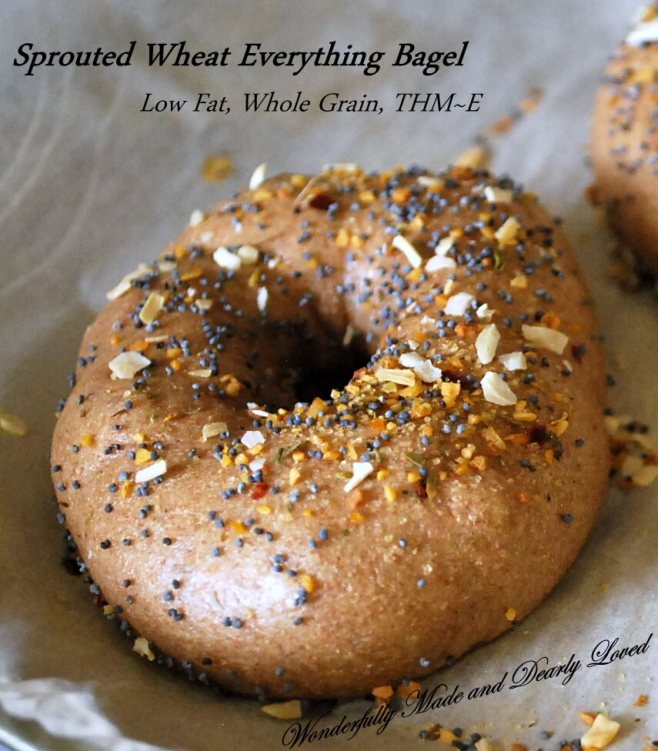 Sprouted Wheat Bagels, made from Sprouted Wheat Dough