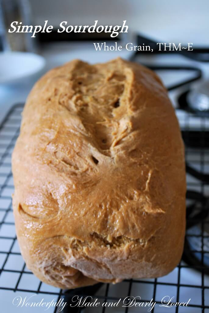 Simple Sour Dough