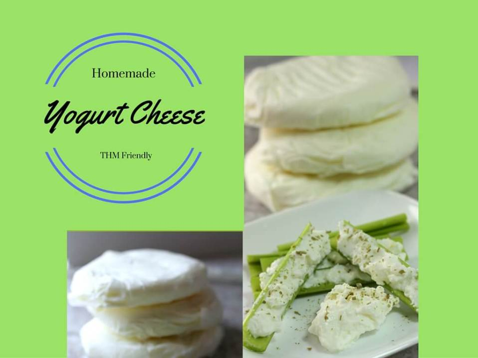 Homemade Yogurt Cheese (THM Friendly)