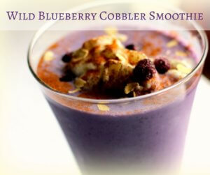 Wild Blueberry Cobbler Smoothie (THM E, Low Fat)