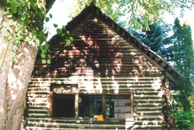 nelson-cabin_copy