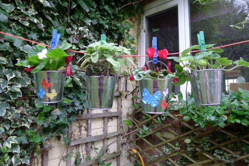 Make a washing line garden if you have no, or limited, garden space