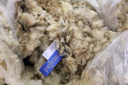 Wool on display at the Maryland State Fair 2013