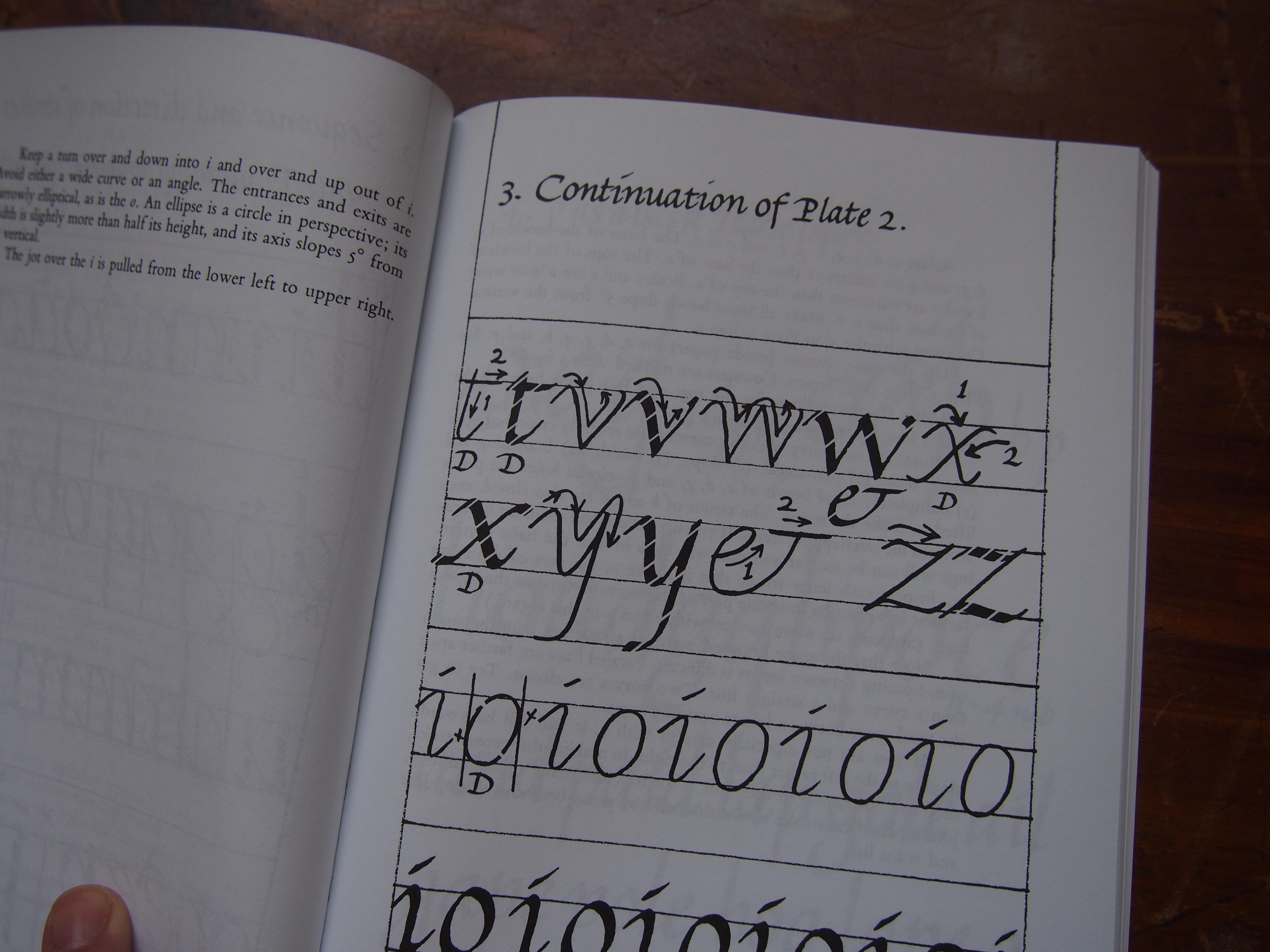 Italic Calligraphy Amp Handwriting Exercises Amp Text By Lloyd J Reynolds