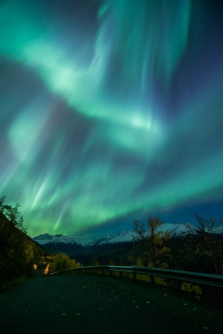 Shades of green aurora burst over a winding road that cuts down an autumn mountain in Eagle River Alaska. Fall leaves are on the empty road and a guardrail lines a sharp drop. The background is fulled with snow capped mountains.