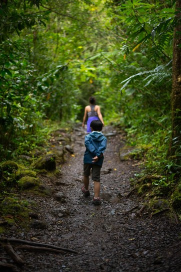 A young boy hikes down Manoa Falls trail in hawaii. It has recently rained and the rainforest feels fresh. He timidly has his hand behind his back and is lagging behind his mother.