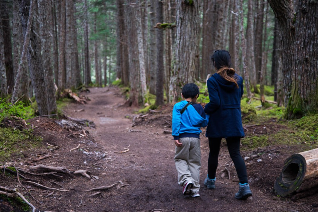 A young mother guides her 5 year old child through a densly wooded forest in Girdwood Alaska. They are seen from the back left holding hands.