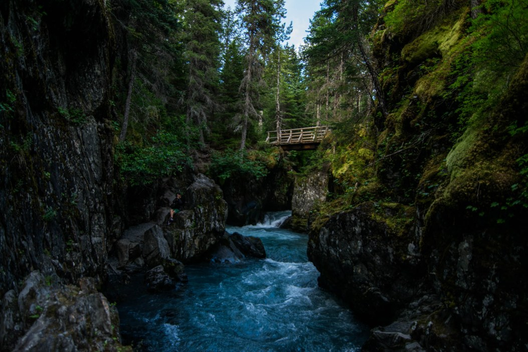 Winner creek's rushing river flows through Girdwood's lush Alaskan rainforest.
