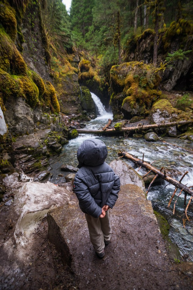 A young boy in a large grey jacket is seen standing before a waterfall called virgin creek falls. It is located in a mossy forest near Girdwood Alaska