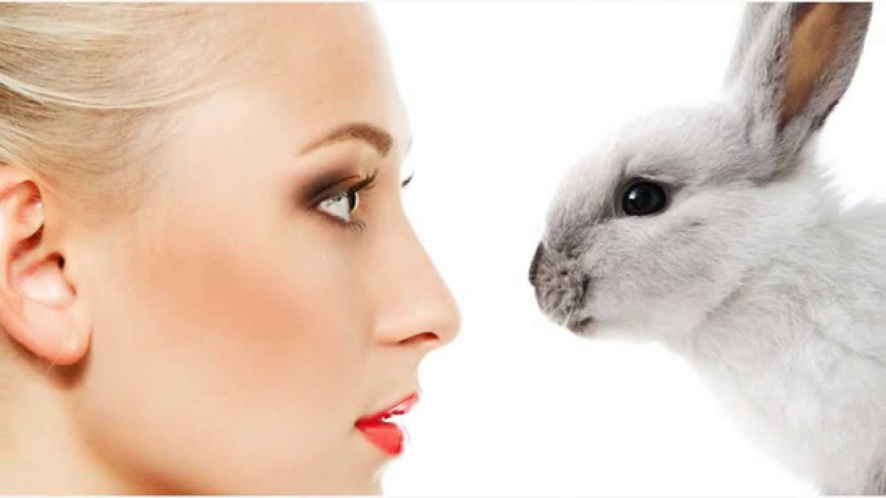 Cruelty free. Vegan Care. Not tested on animals. Are you as confused as I am?