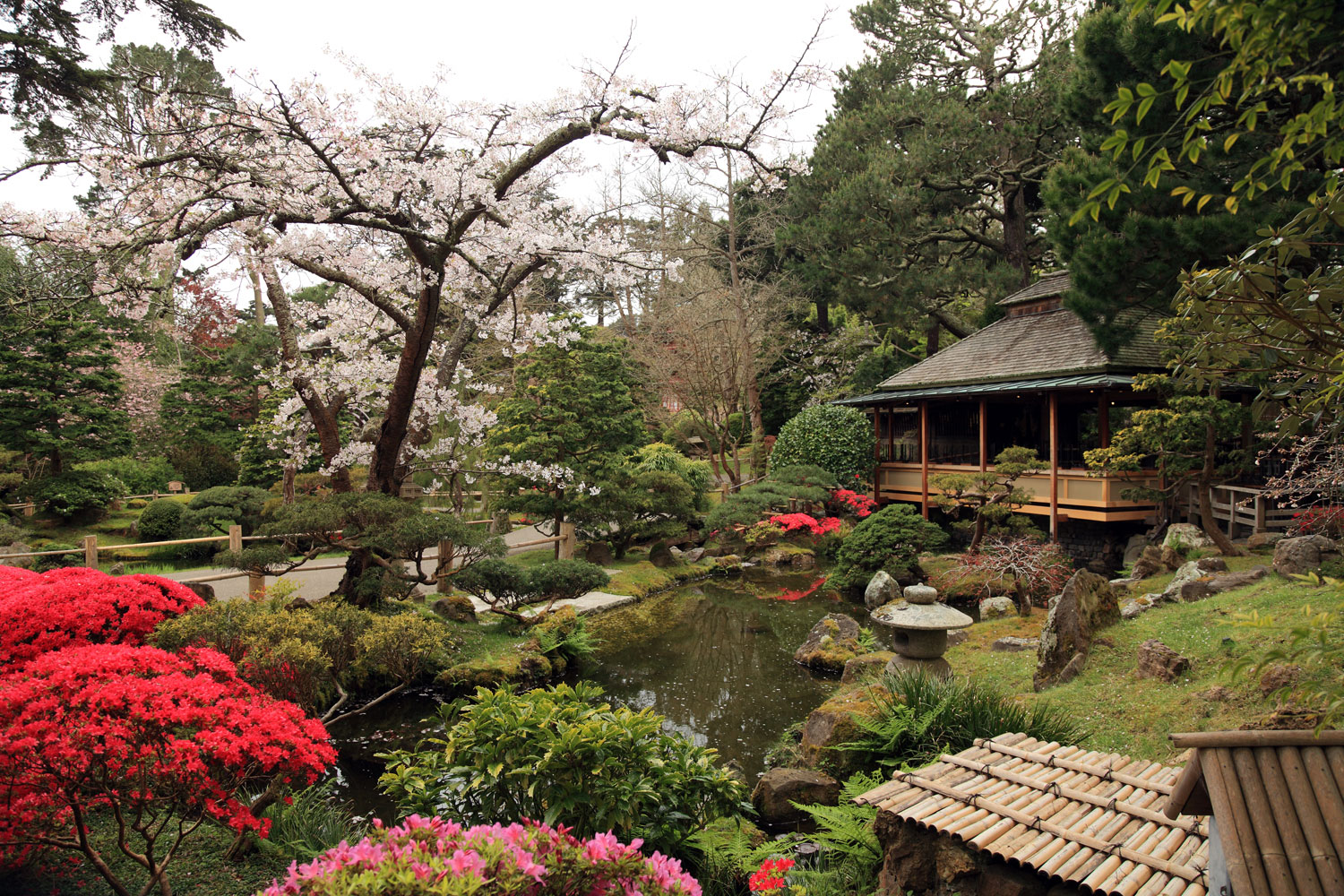 How to get into San Francisco museums for free - Japanese Tea Garden