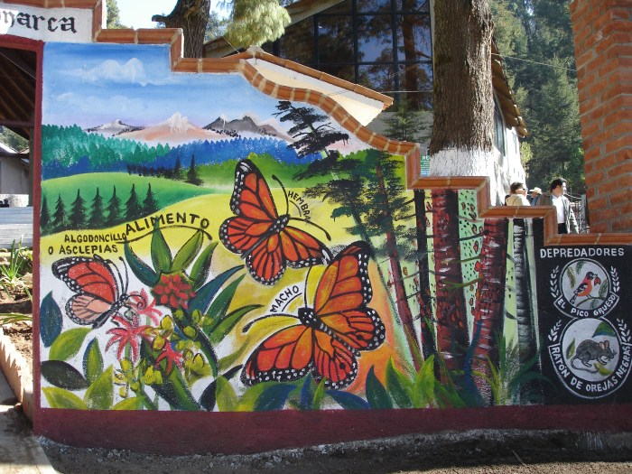 El Rosario Butterfly Sanctuary Entrance
