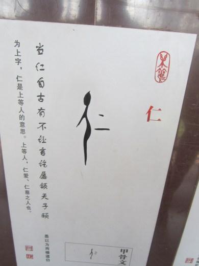 IMG_1389[1]