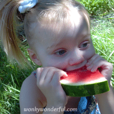 little blonde girl shoving a watermelon slice into her mouth