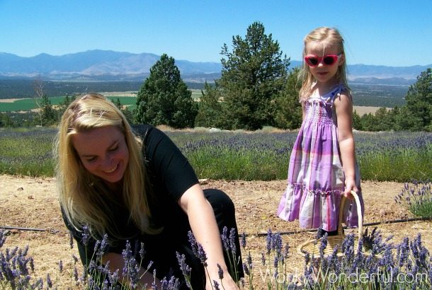 blonde lady and little girl picking lavender