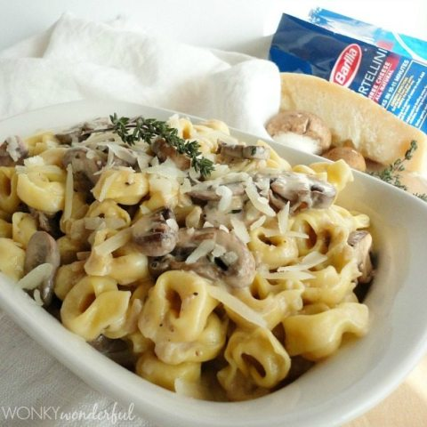 creamy tortellini in white dish with pasta package in background