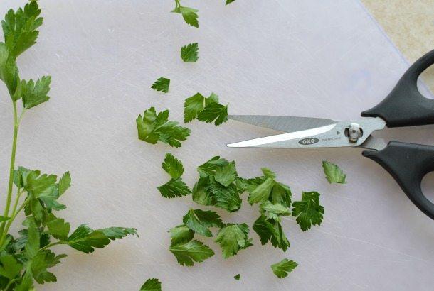 Shrimp Scampi Pasta made with fresh parsley - wonkywonderful.com