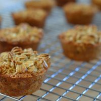 Healthy Oatmeal Muffin Dippers