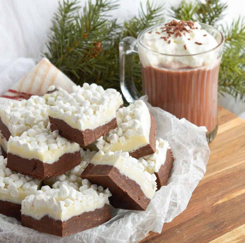 chocolate fudge next to hot cocoa mug