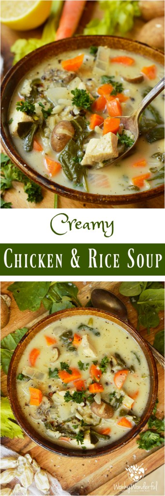 Just in time for chilly weather and cold season, this Creamy Chicken Rice Soup Recipe is comfort in a bowl. The addition of fresh spinach and mushrooms make this soup extra satisfying and nutritious. The perfect healthy meal to make you feel better!