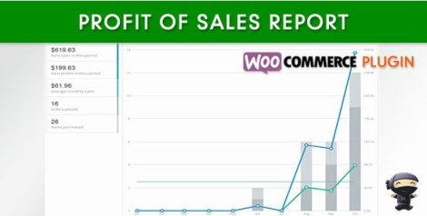 WooCommerce Profit of Sales Report