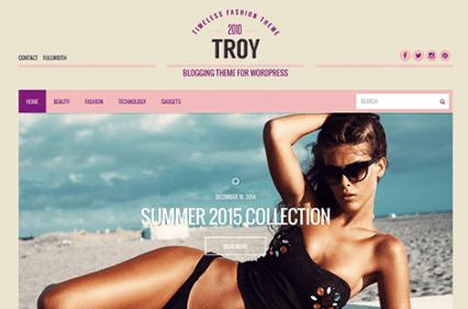 CSS Igniter Troy WordPress Theme