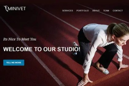 CyberChimps Minivet WordPress Theme