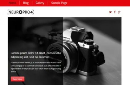 CyberChimps Neuro Pro 4 WordPress Theme