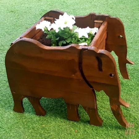 אדנית לגינה דגם פיל אפריקאי