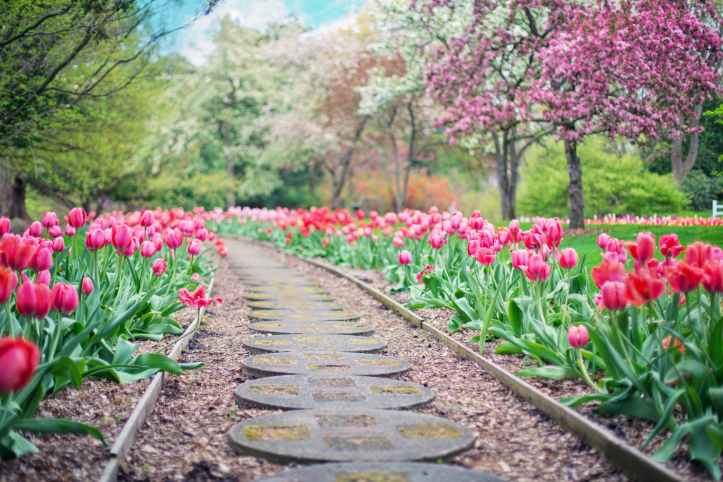 Landscaping contractors tell you how to decorate the garden
