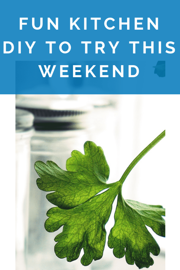 fun kitchen diy to try this weekend