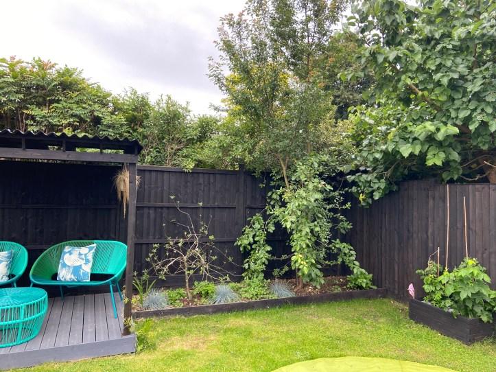 Garden trees