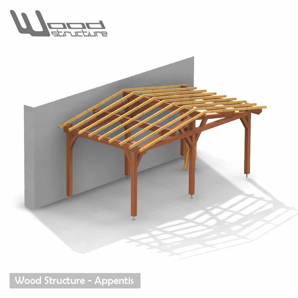 Appentis 2 Pans M Wood Structure