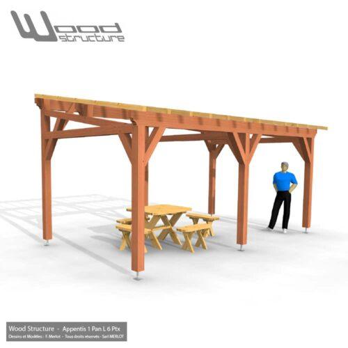 Appentis 1 Pan M Kit Charpente Bois Wood Structure
