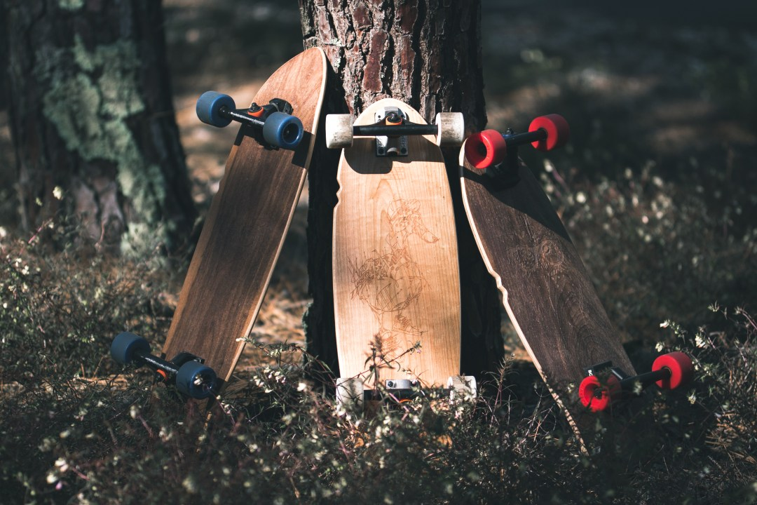 Skateboards contre un arbre