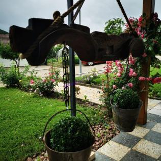 Pflanzenständer aus Ochsengeschirr