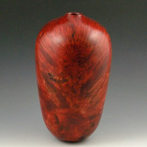 Silver Maple Burl