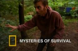 National Geographic: Тайны выживания / Mysteries of Survival