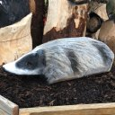 badger wood carving woodbank nurseries