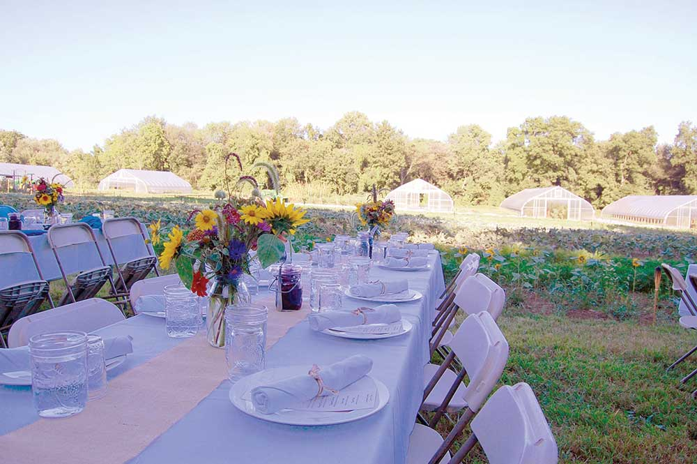 Massaro Community Farm – Dinner on the Farm 2018