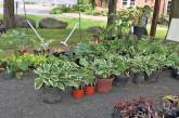 Garden Club to Hold Plant Sale