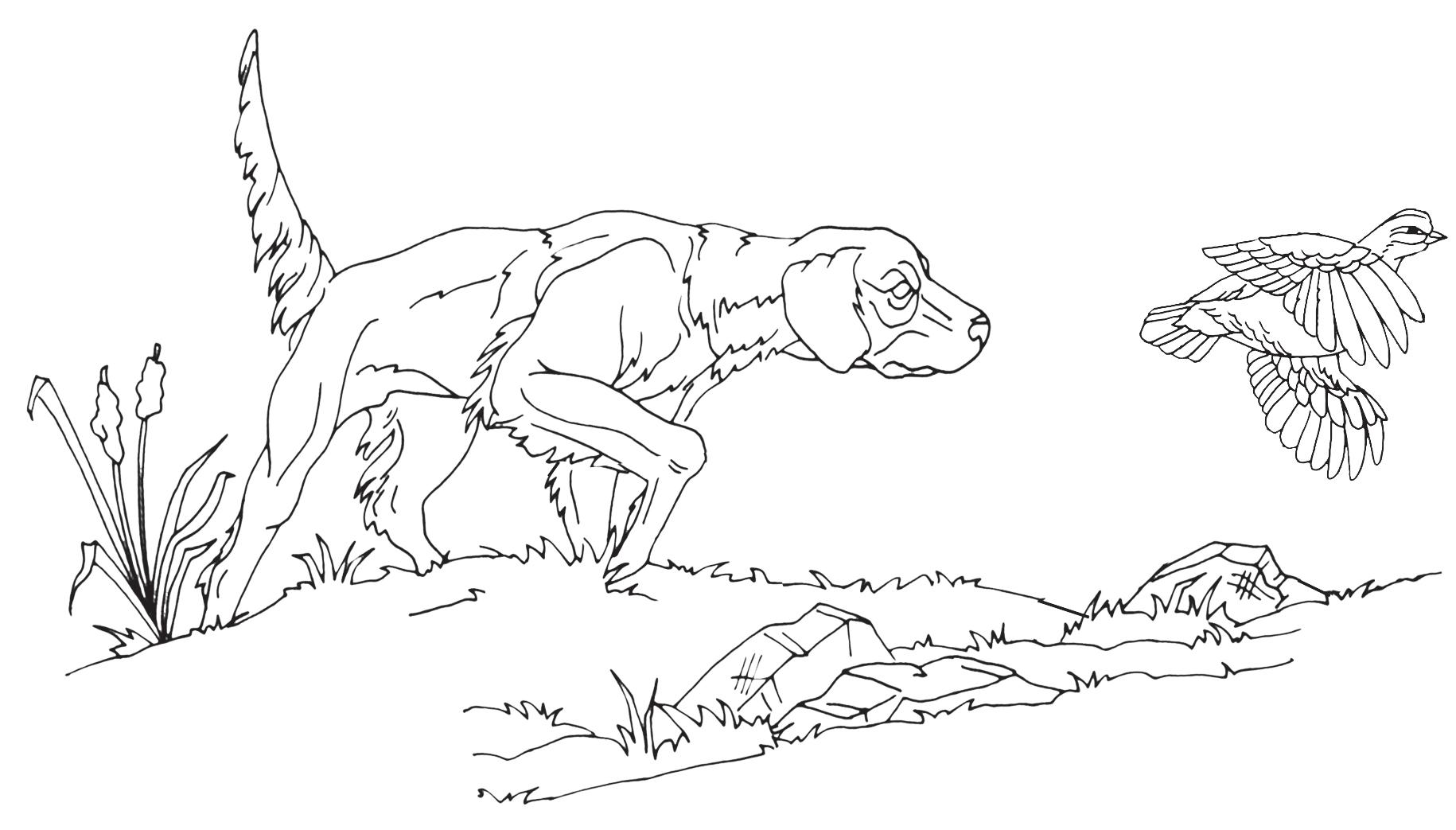 Low Relief Animal Scenes