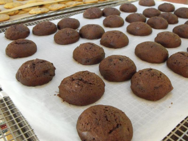Homemade Cocoa Drop Cookies