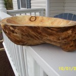 Burl bowl carving