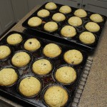 Orange Apple Chocolate Chip Muffins