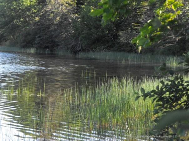lake,Loch Katrine