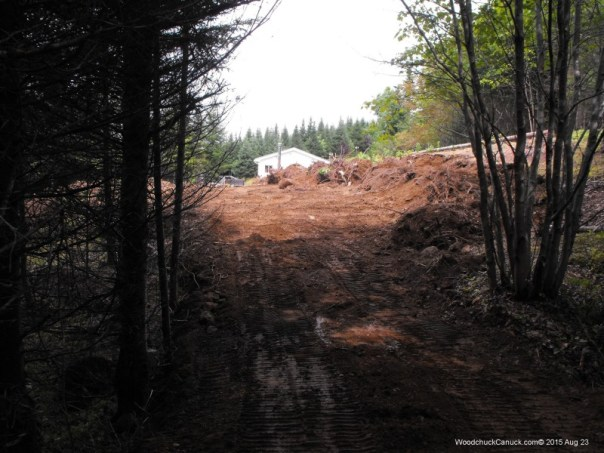 forestry,landscaping,road building