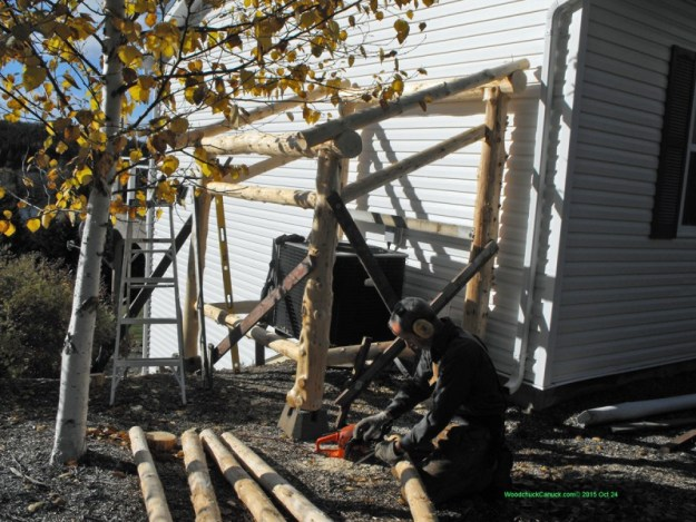 carpentry,woodworking,logs,forestry,heat pump shelters,chainsawing,Husqvarna
