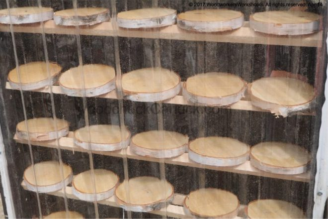 birch wood slices, wood craft supplies, homemade kiln